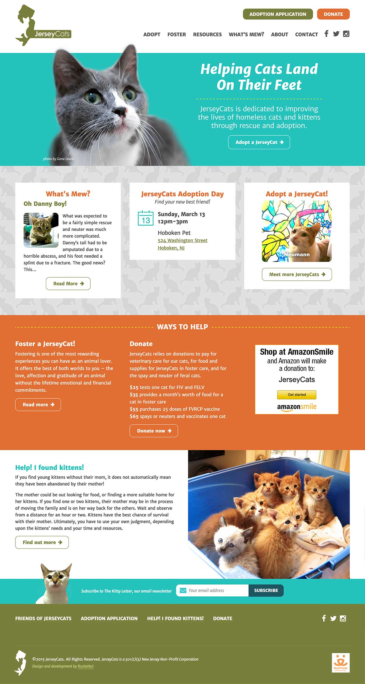 Detail of JerseyCats homepage