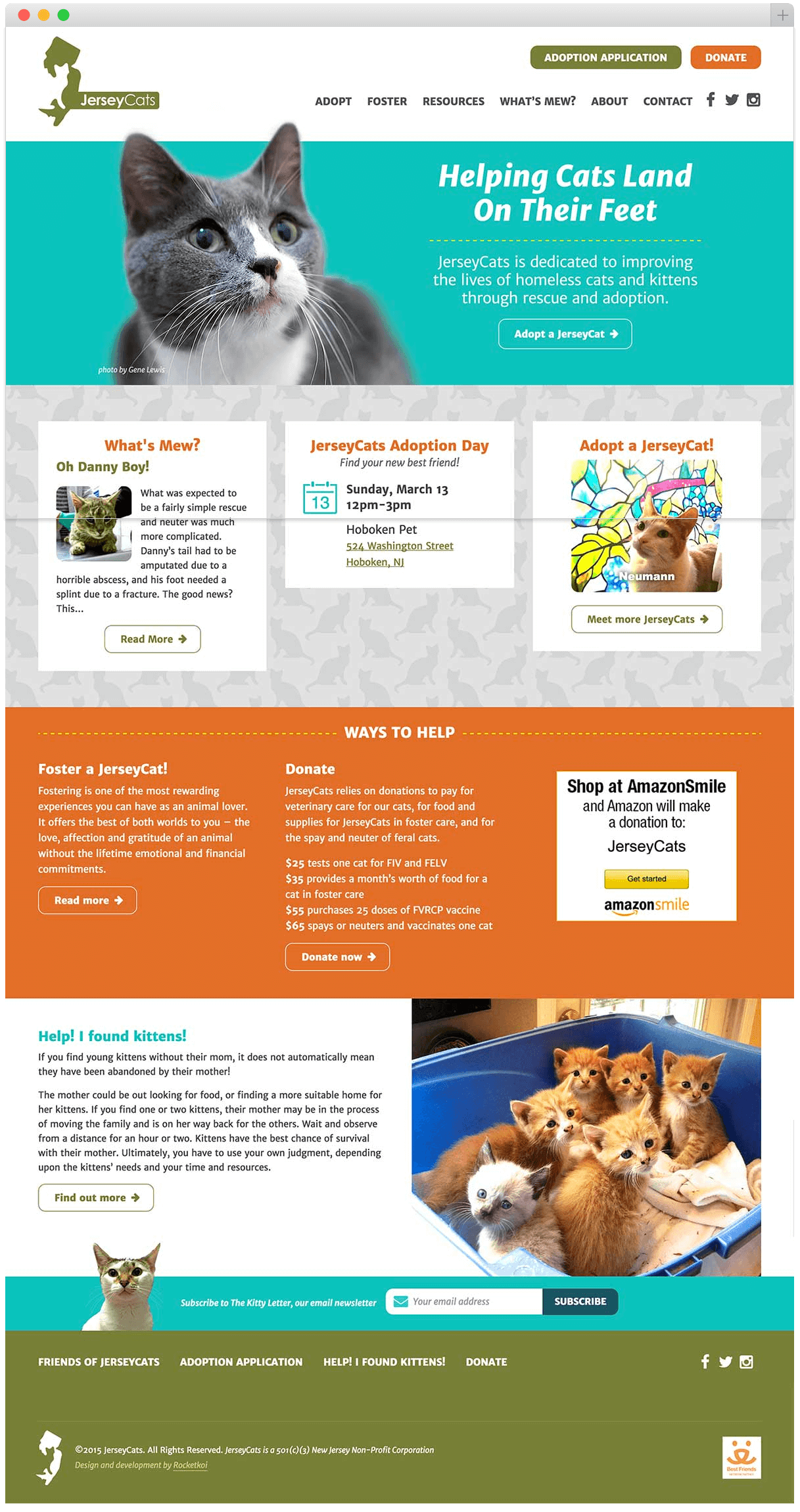 jerseycats.org homepage